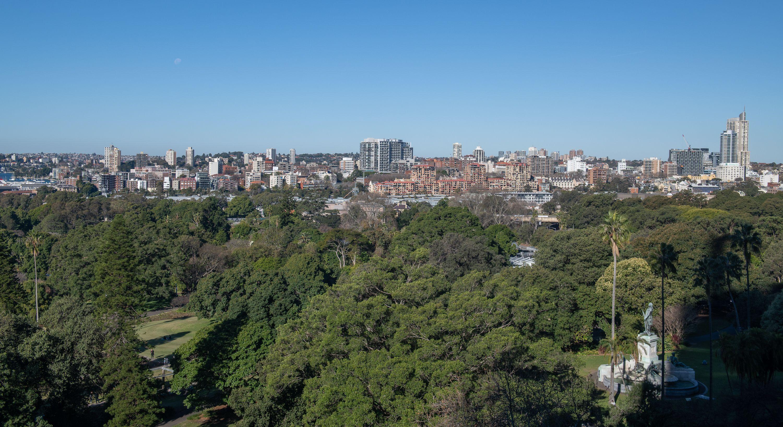 Greenary in City with skyscraper